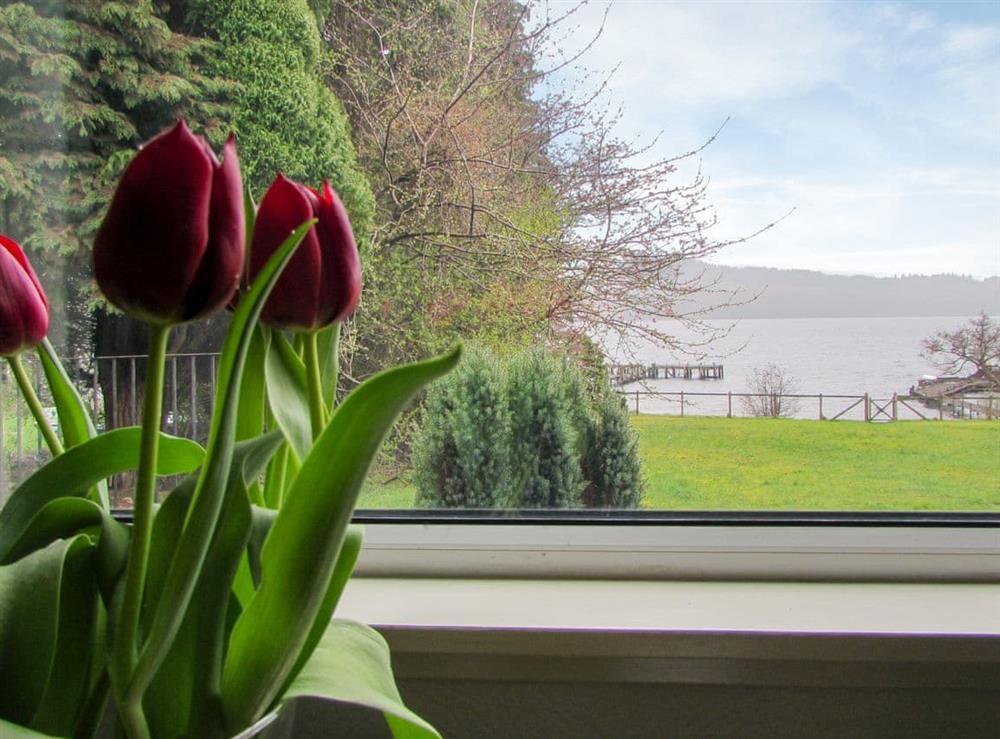 View at Balmaha Apartment,