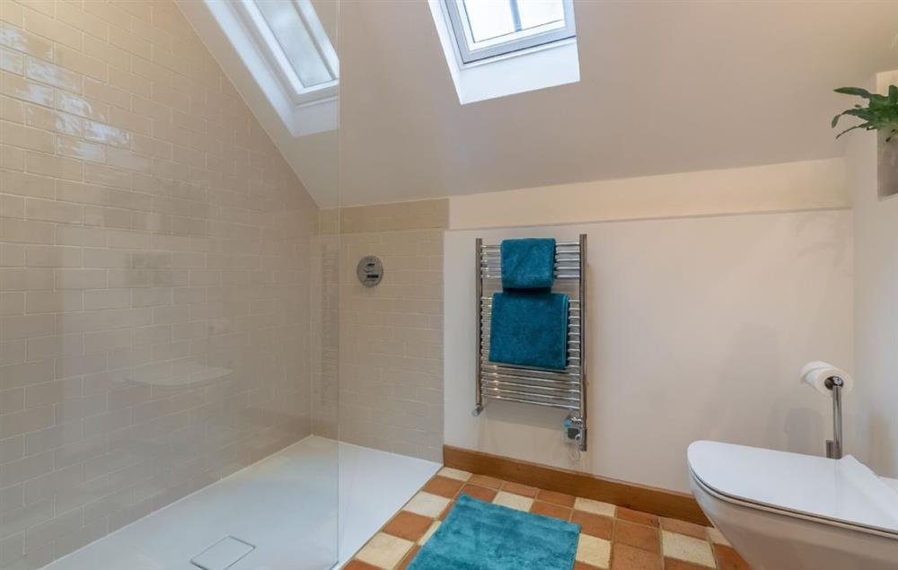 Ground floor: En-suite with walk-in shower