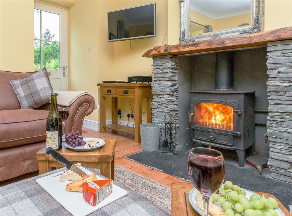 Cosy living room with wood burner at Graces Cottage,
