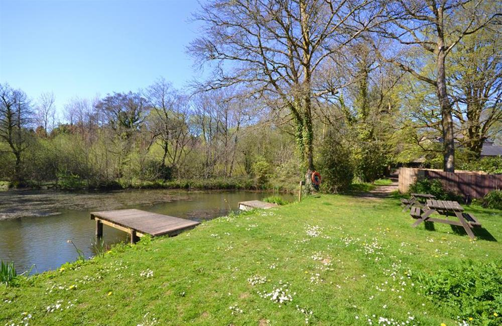 The Colmer lake and picnic area at Jays Cottage, Modbury