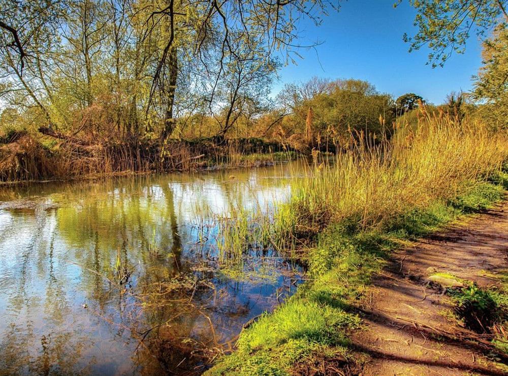 Surrounding area (photo 4) at Julians Retreat in Wroxham, Norfolk