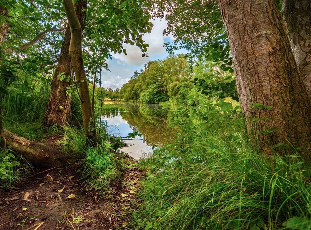 Surrounding area at Julians Retreat in Wroxham, Norfolk