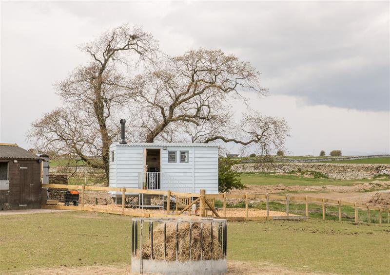 Rural landscape at Ketburn Shepherds Hut, Whithorn