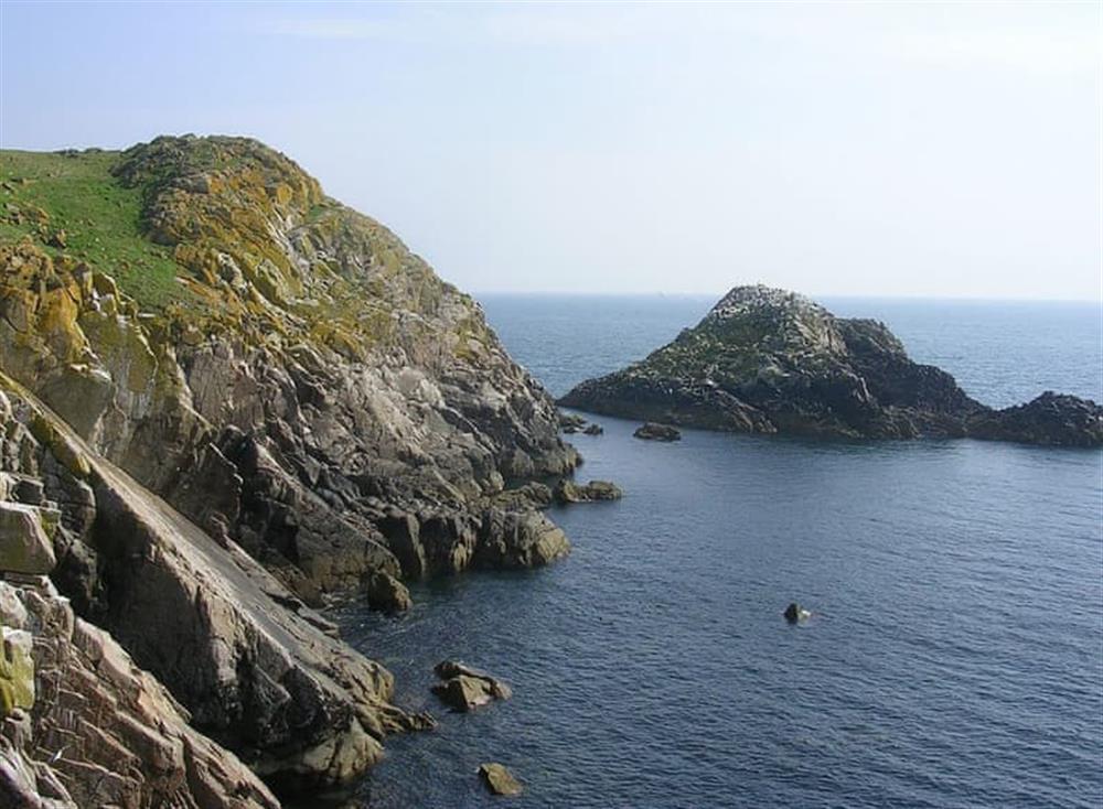 Saltee Island
