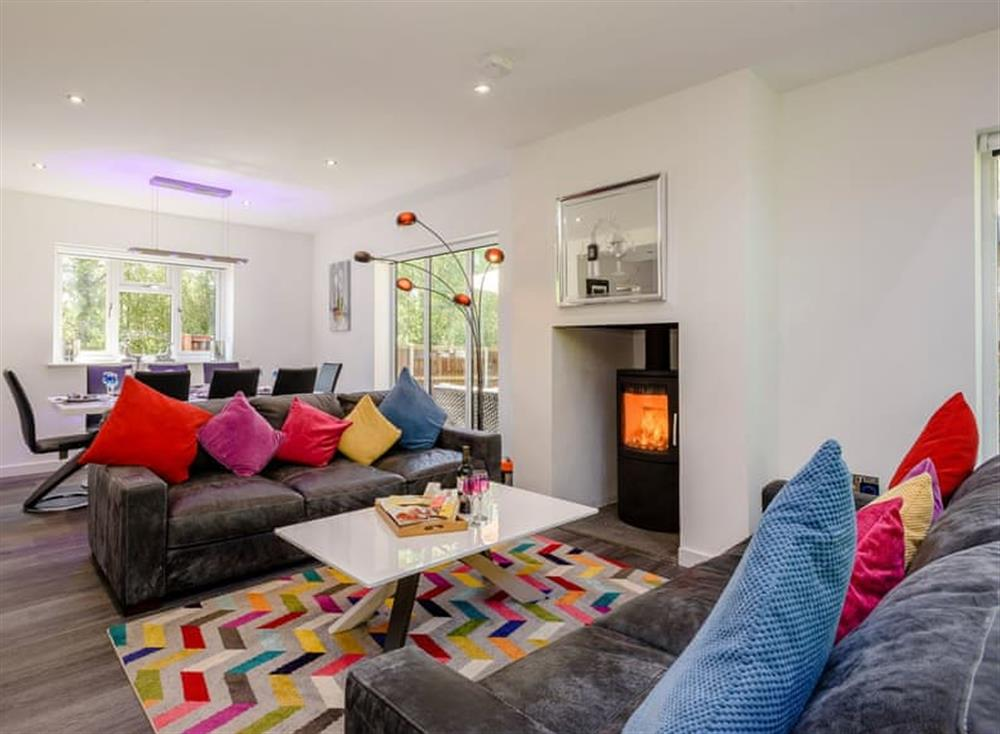 Bright and airy open plan living space at Kingfisher Lodge in Horning, Norfolk