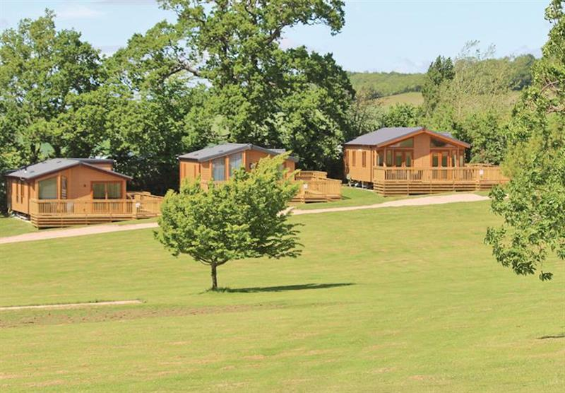 The park setting at Lady's Mile Holiday Park in Dawlish Warren, Devon