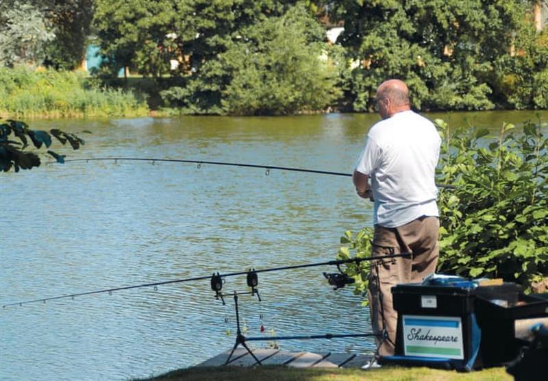 Fishing at Lakeside Holiday Park in Burnham-on-Sea, Somerset