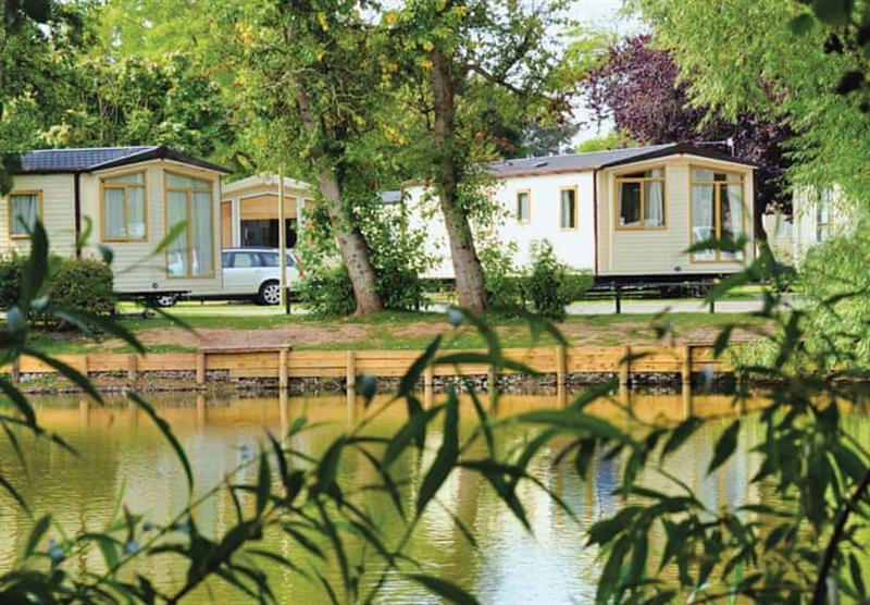 Lakeside setting at Lakeside Holiday Park in Burnham-on-Sea, Somerset