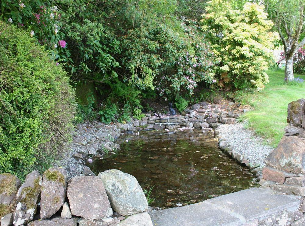 There is a lovely pond in the garden at The Old Barn,