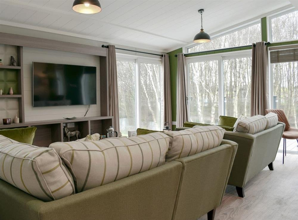 Living area at Lakeview Lodge in Landford, near Salisbury, Wiltshire