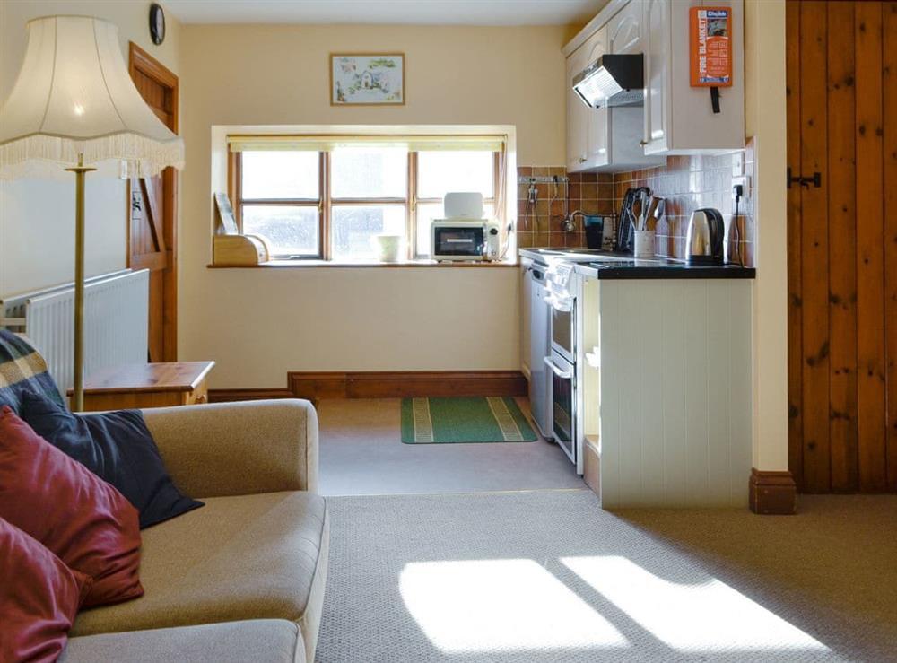 Attractive open-plan living space