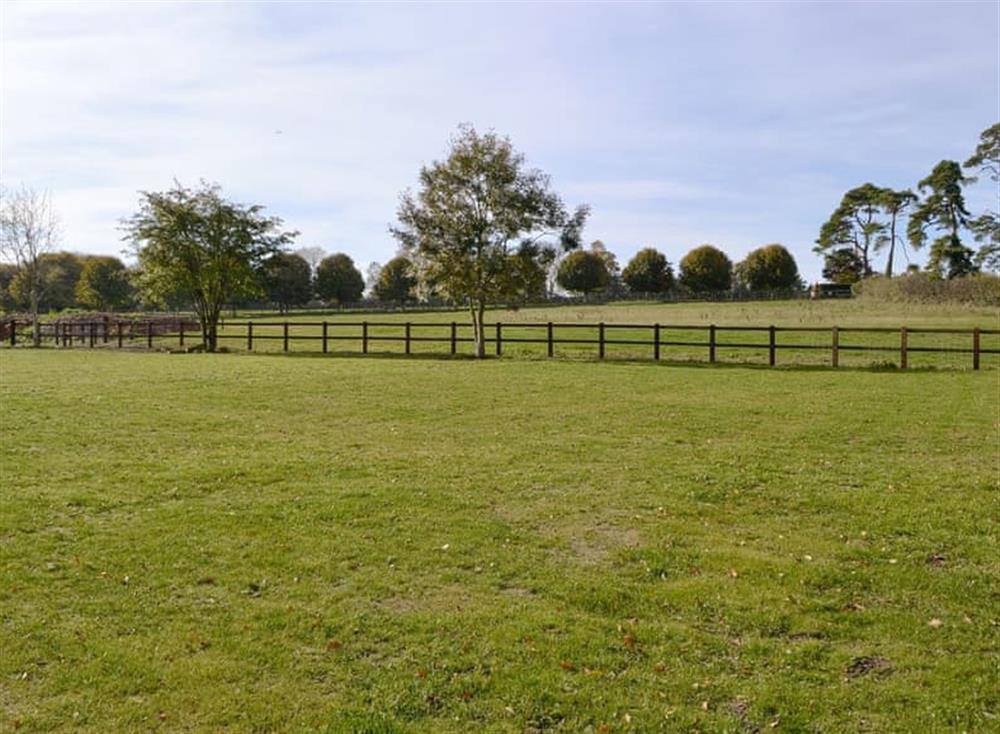 Peaceful countryside views at Cedar Cottage,