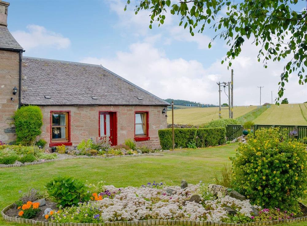 Cosy welcoming property at Laurel Bank in Alyth, near Blairgowrie, Perthshire