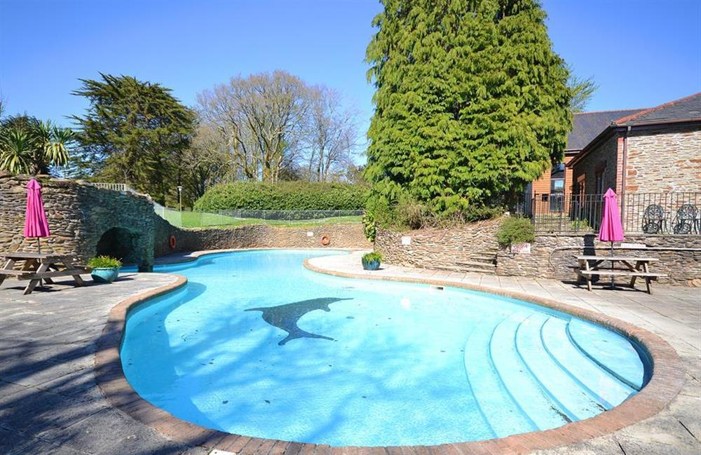 The outdoor pool at the Colmer Country Estate at Little Barley, Modbury