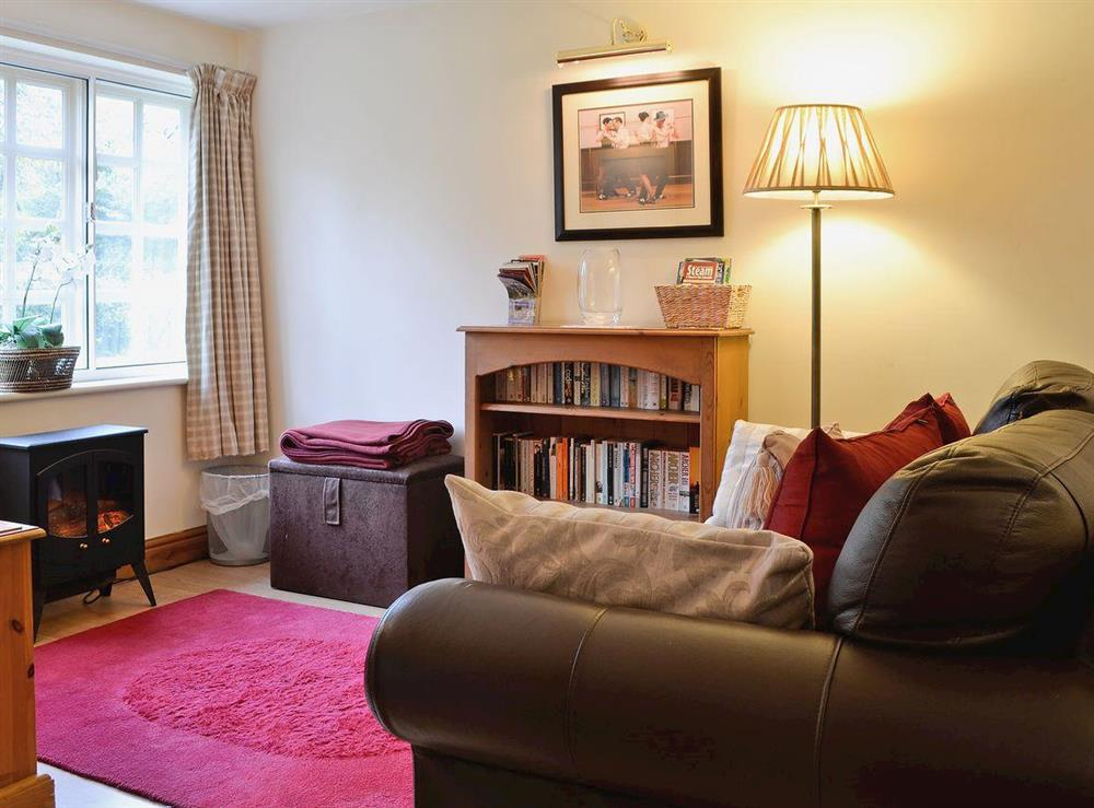 Delightful living area with electric woodburner at Upton Cottage,