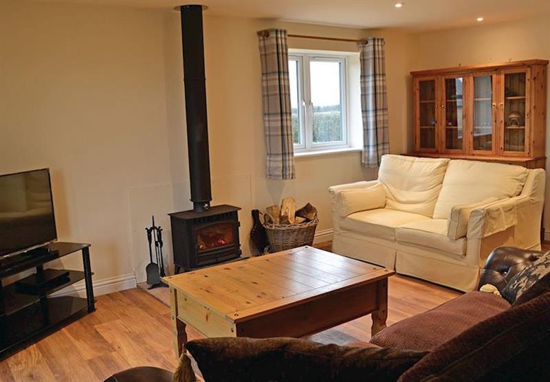 Living room in Hedgehog Lodge at Little Moorland Farm Lodges in Chapel Allerton, Somerset