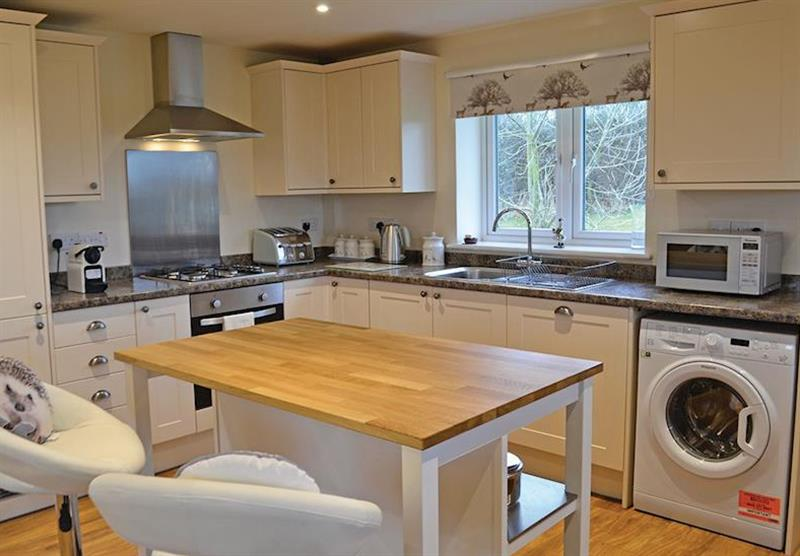 The kitchen in the Hedgehog Lodge at Little Moorland Farm Lodges in Chapel Allerton, Somerset