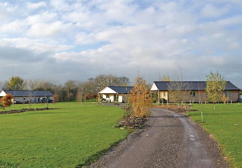 The setting, and a selection of lodges at Little Moorland Farm Lodges in Chapel Allerton, Somerset