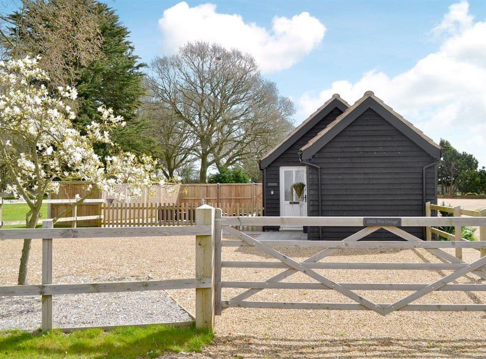 Exterior at Little Tree Cottage in Skeyton, near Norwich, Norfolk