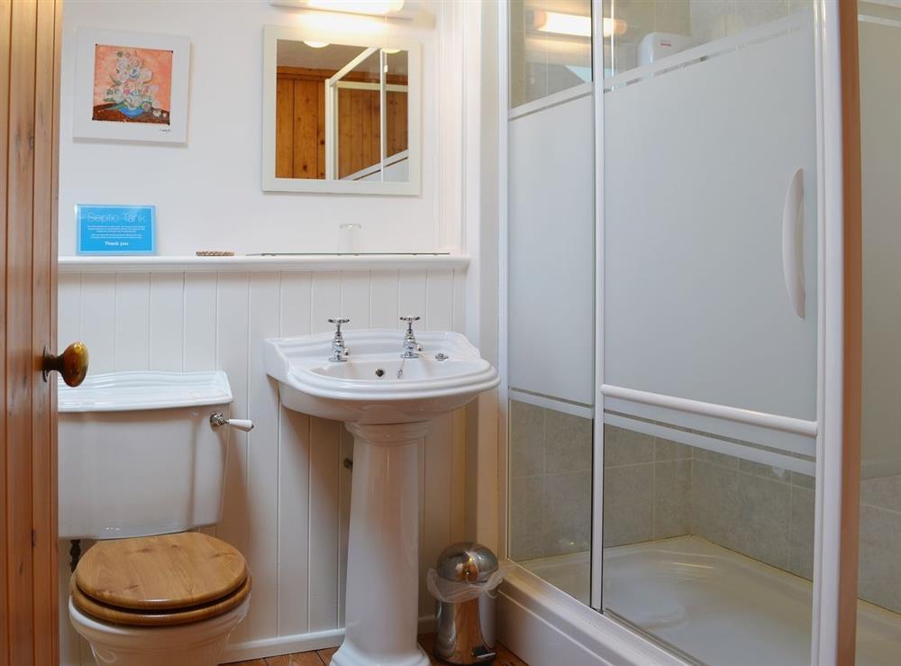 Shower room at Llwyn Onn in Llangian, near Abersoch, Gwynedd