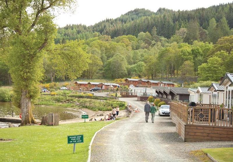 Park views at Loch Lomond Holiday Park in Inveruglas, Tarbet, Perthshire & Southern Highlands