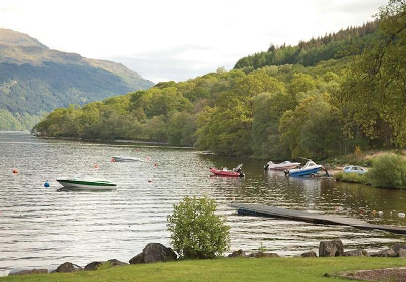 Photo 8 at Loch Lomond Holiday Park in Inveruglas, Tarbet, Perthshire & Southern Highlands