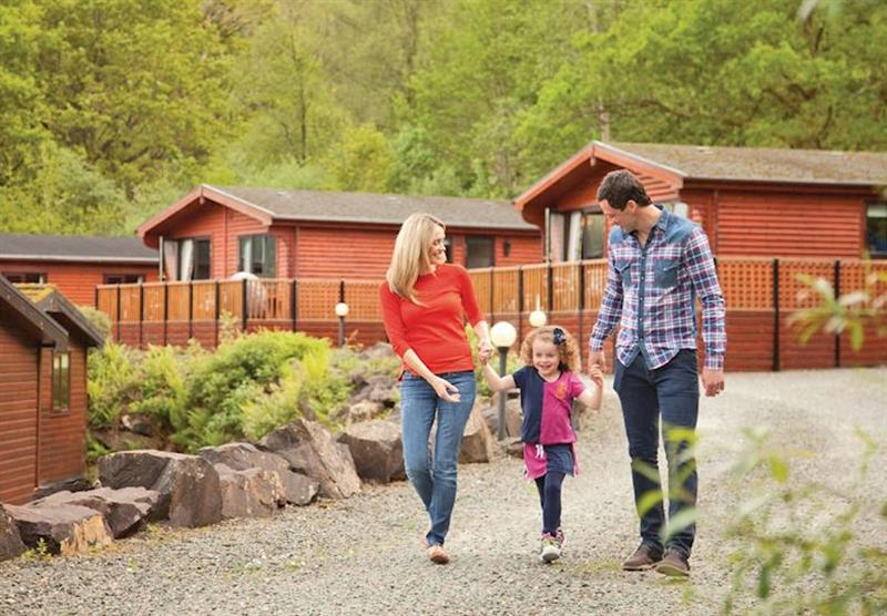 The park setting at Loch Lomond Holiday Park in Inveruglas, Tarbet, Perthshire & Southern Highlands