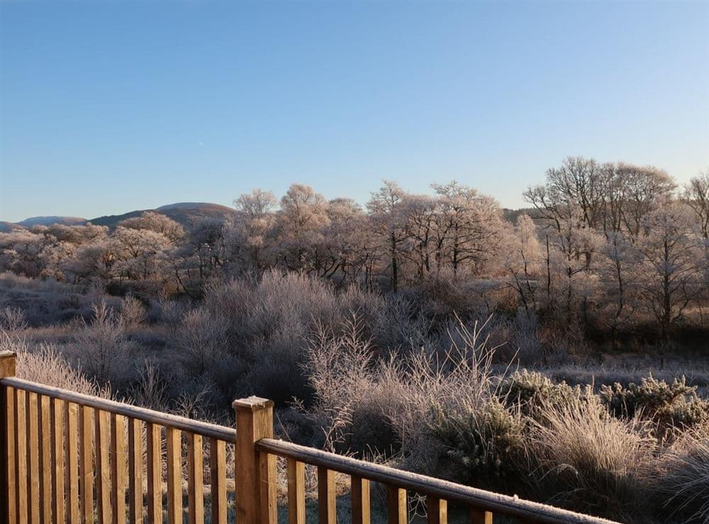 Frosty winter view from the terrace