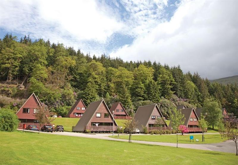 Photo 3 at Lochgoilhead Lodges in Lochgoilhead, Perthshire & Southern Highlands
