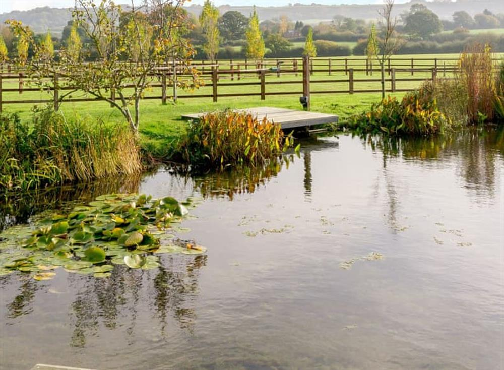 Shared decked pond area (photo 3) at The Bull Pen 2,