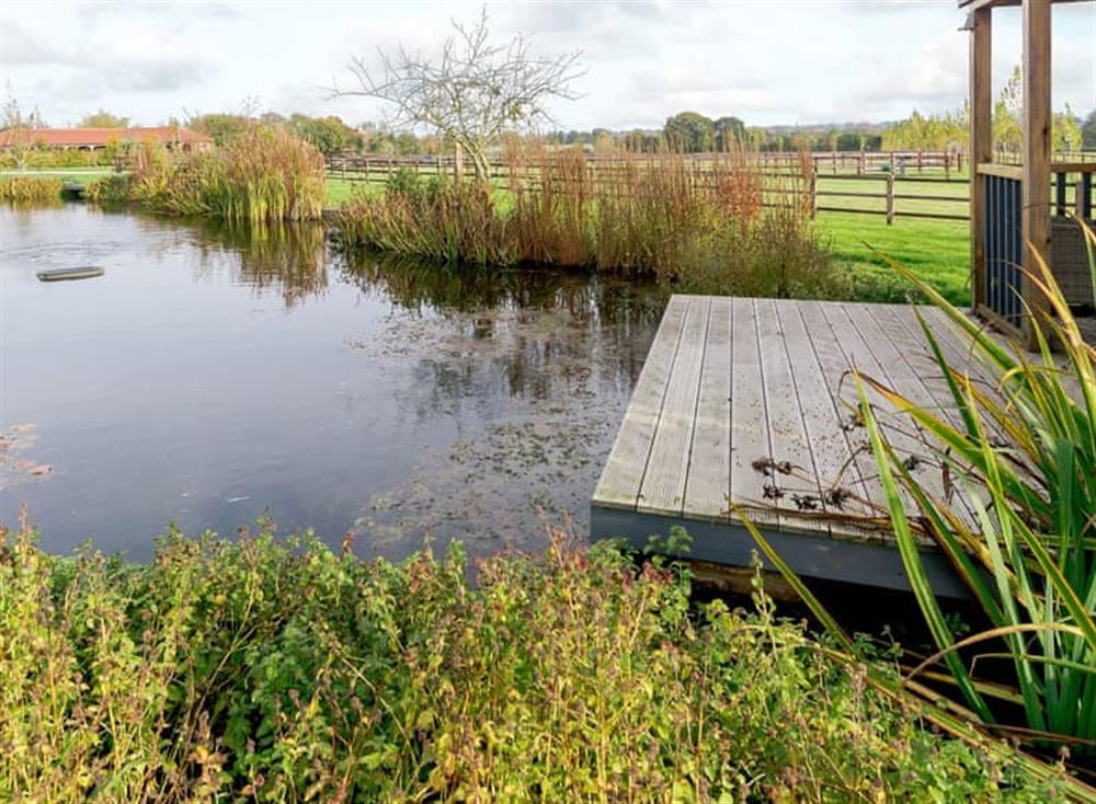 Shared decked pond area at The Bull Pen 2,