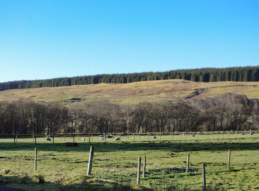 Lovely surrounding area at Lower Brae in Strath Oykel, by Ardgay, Highlands, Ross-Shire