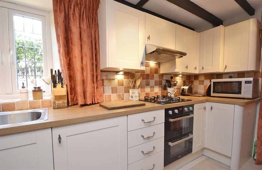 A closer view of the kitchen at Lydiard Cottage, Loddiswell