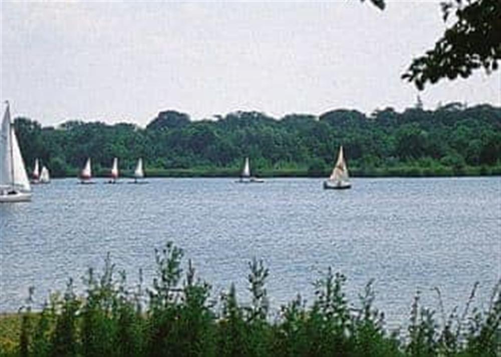 Lake at Mallard in Wroxham, Norfolk., Great Britain