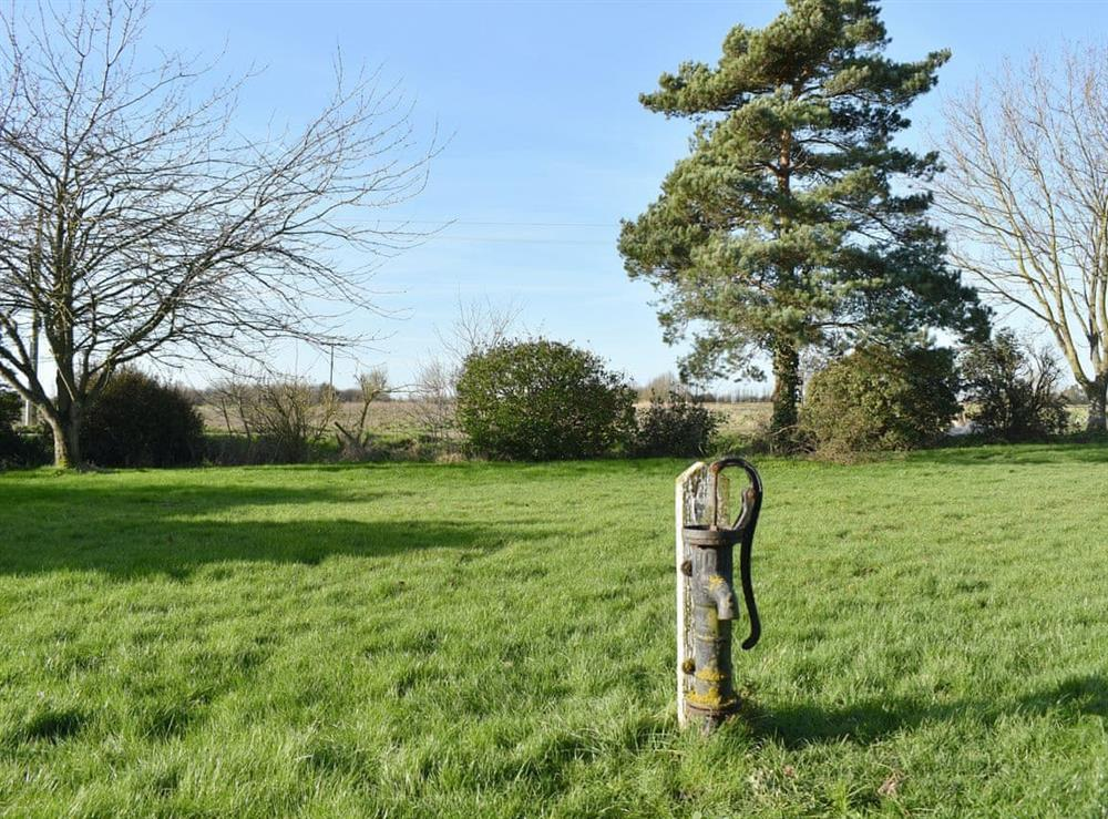 Large lawned garden area at Mark Farmhouse in Tillingham, near Burnham, Essex