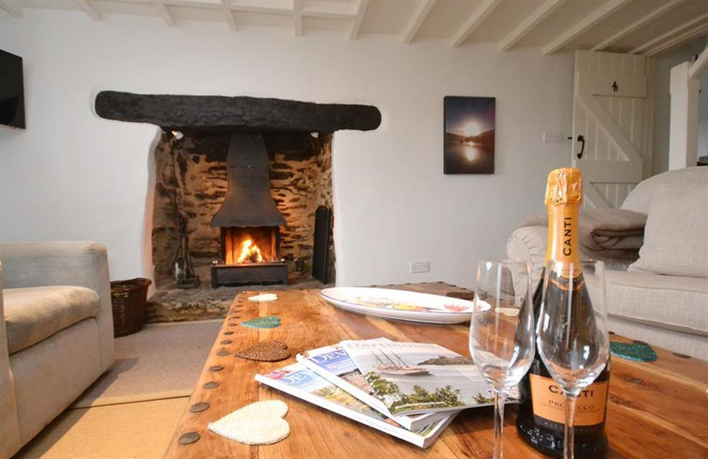 Snuggle up in front of the open fire at Meadow View Cottage, Dittisham