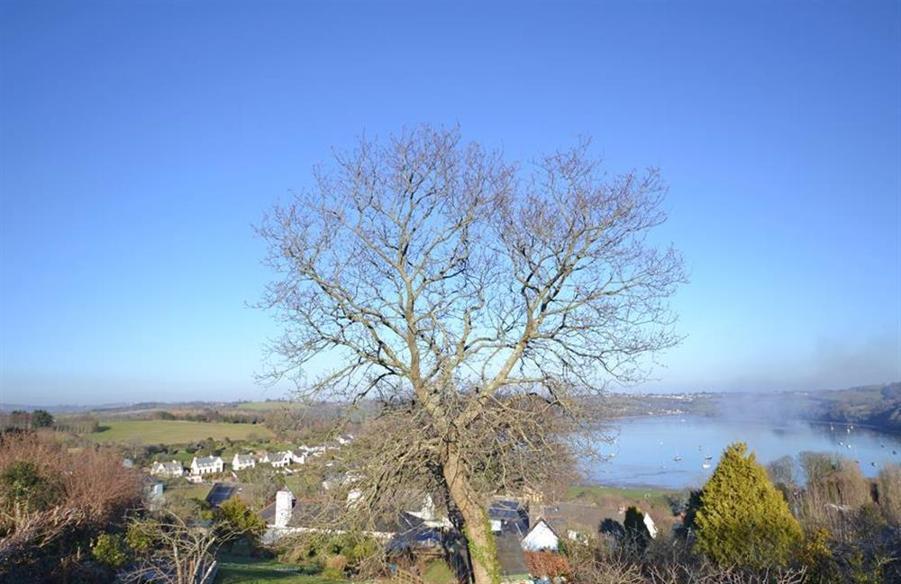 The view from the summer house at Meadow View Cottage, Dittisham