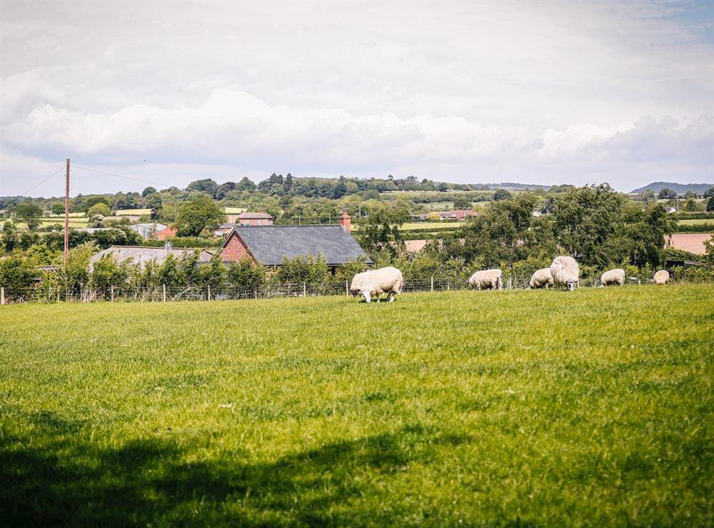 Beautiful surrounding countryside at Millers House,