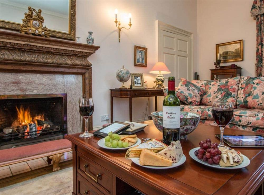 Cosy living room with open fire at Monkwood House in Minishant, near Ayr, Ayrshire