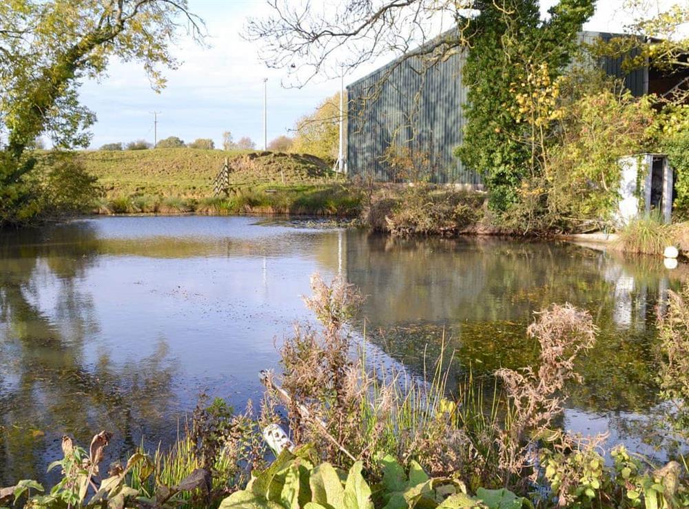 Peaceful fishing lake
