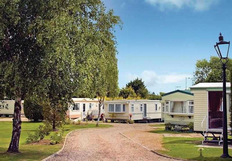 Photo 1 at Norfolk Broads Caravan Park in Norfolk, East of England