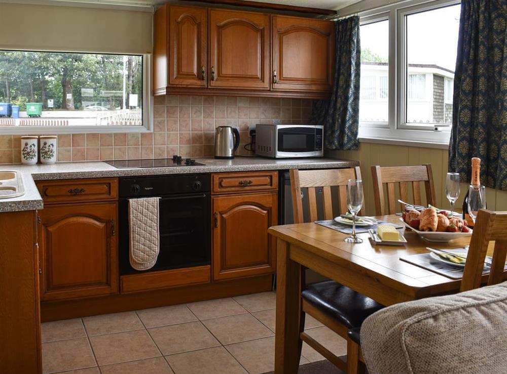 Kitchen and dining area at Norton Park in Dartmouth, Devon