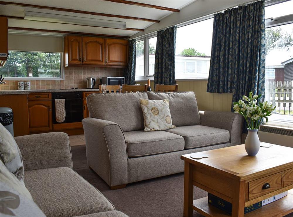 Open plan living space at Norton Park in Dartmouth, Devon