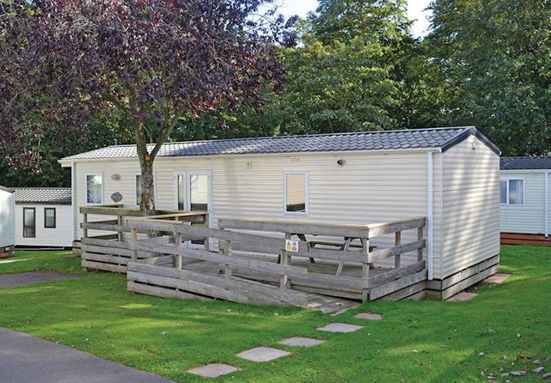 Beech Caravan at Oakcliff Holiday Park in Dawlish, South Devon