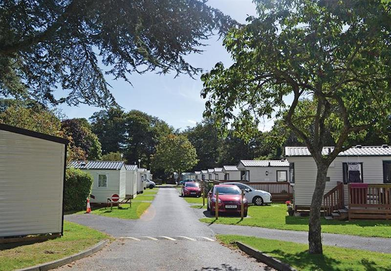 The caravans at Oakcliff Holiday Park in Dawlish, South Devon