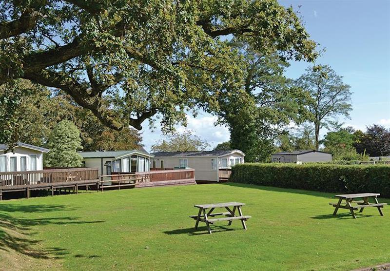 The park setting at Oakcliff Holiday Park in Dawlish, South Devon