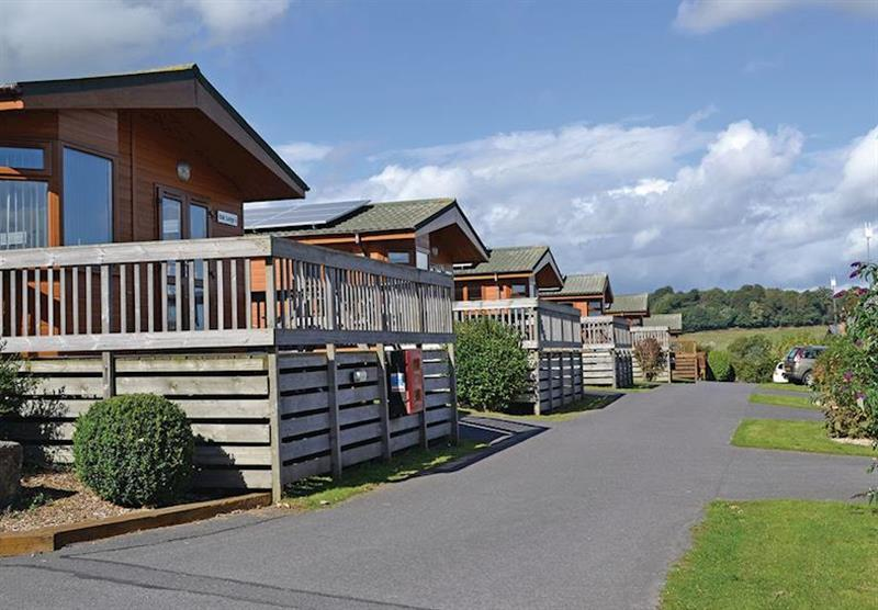 Typical Oak Lodge at Oakcliff Holiday Park in Dawlish, South Devon