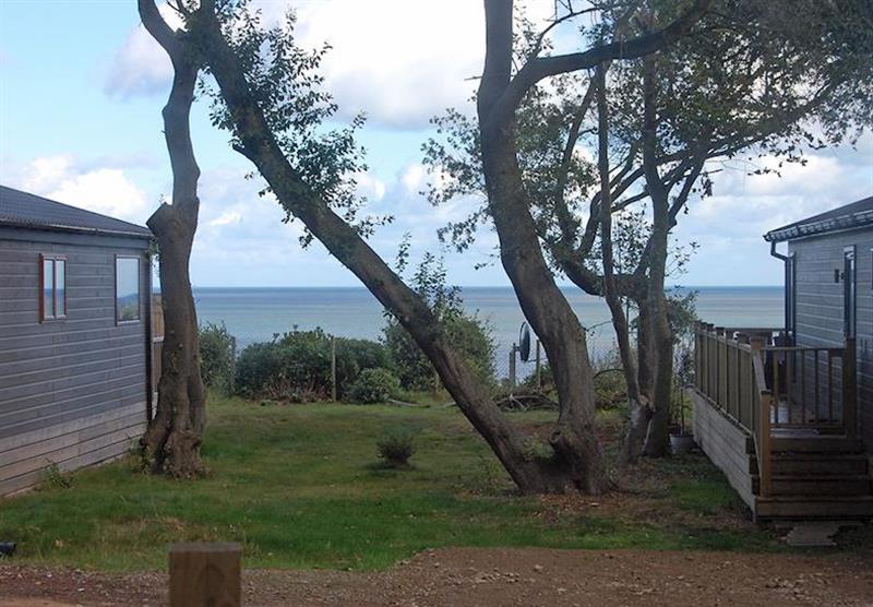 Oaktree, with views over the sea at Ocean Lodges in Corton, Lowestoft