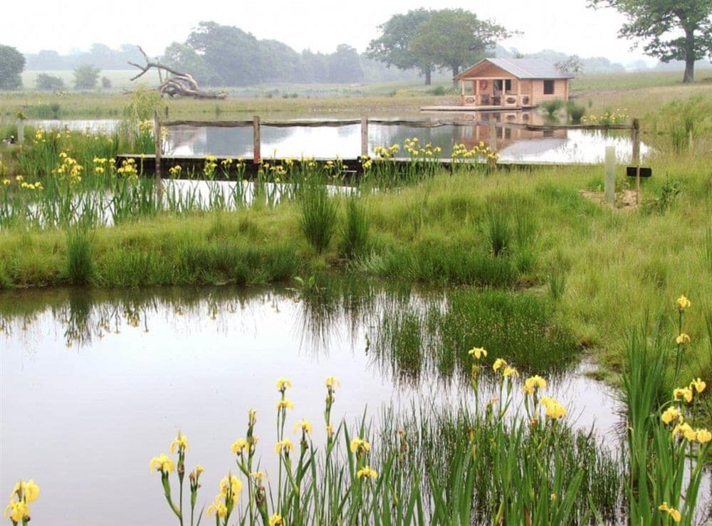 Trout Lake at Old Hall Farmhouse in St Nicholas, Harleston, Norfolk., Great Britain
