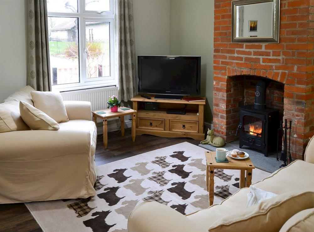 Cosy living room with wood burner at Old School House in Glemsford, near Sudbury, Suffolk